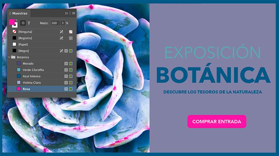 Importación de paletas de color Indesign e Illustrator.