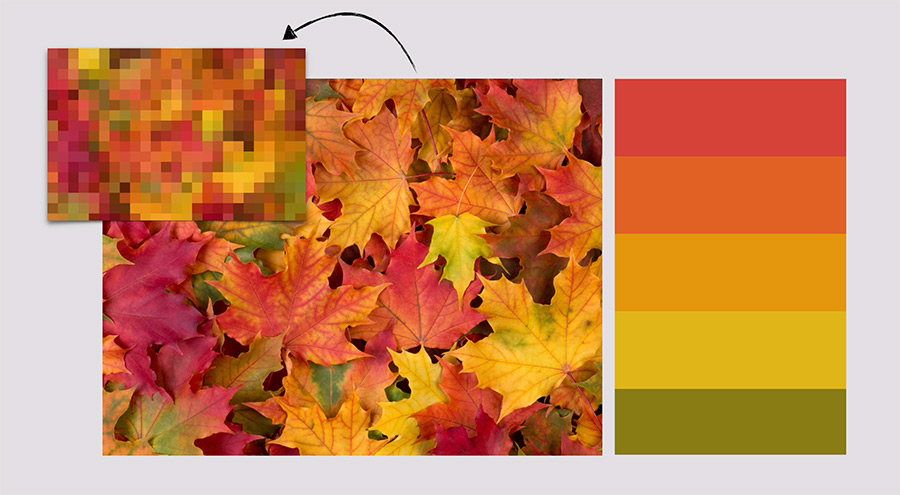 Paletas de color temáticas a través de imágenes.