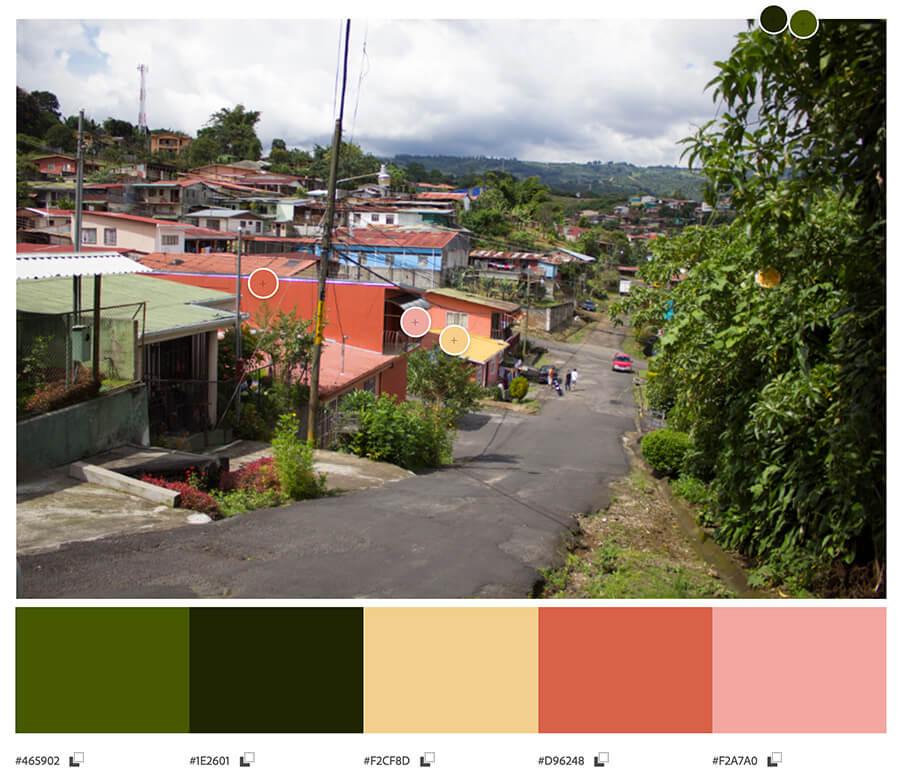 Cómo hacer una paleta de colores a través de generadores online y herramientas de diseño gráfico, web, redes sociales y branding